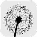 风游戏官方测试版下载