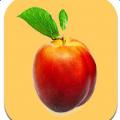 油桃直播软件安卓版下载