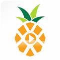 菠萝音乐苹果版下载