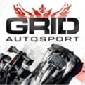 GRID Autosport iOS汉化版下载