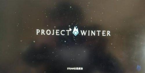 《冬日计划》进入游戏没反应怎么办 游戏语音卡顿问题解决方法