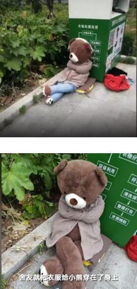 医学院被遗弃的小熊