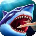 鲨鱼小游戏下载安装
